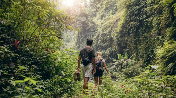 Image result for costa rica hiking